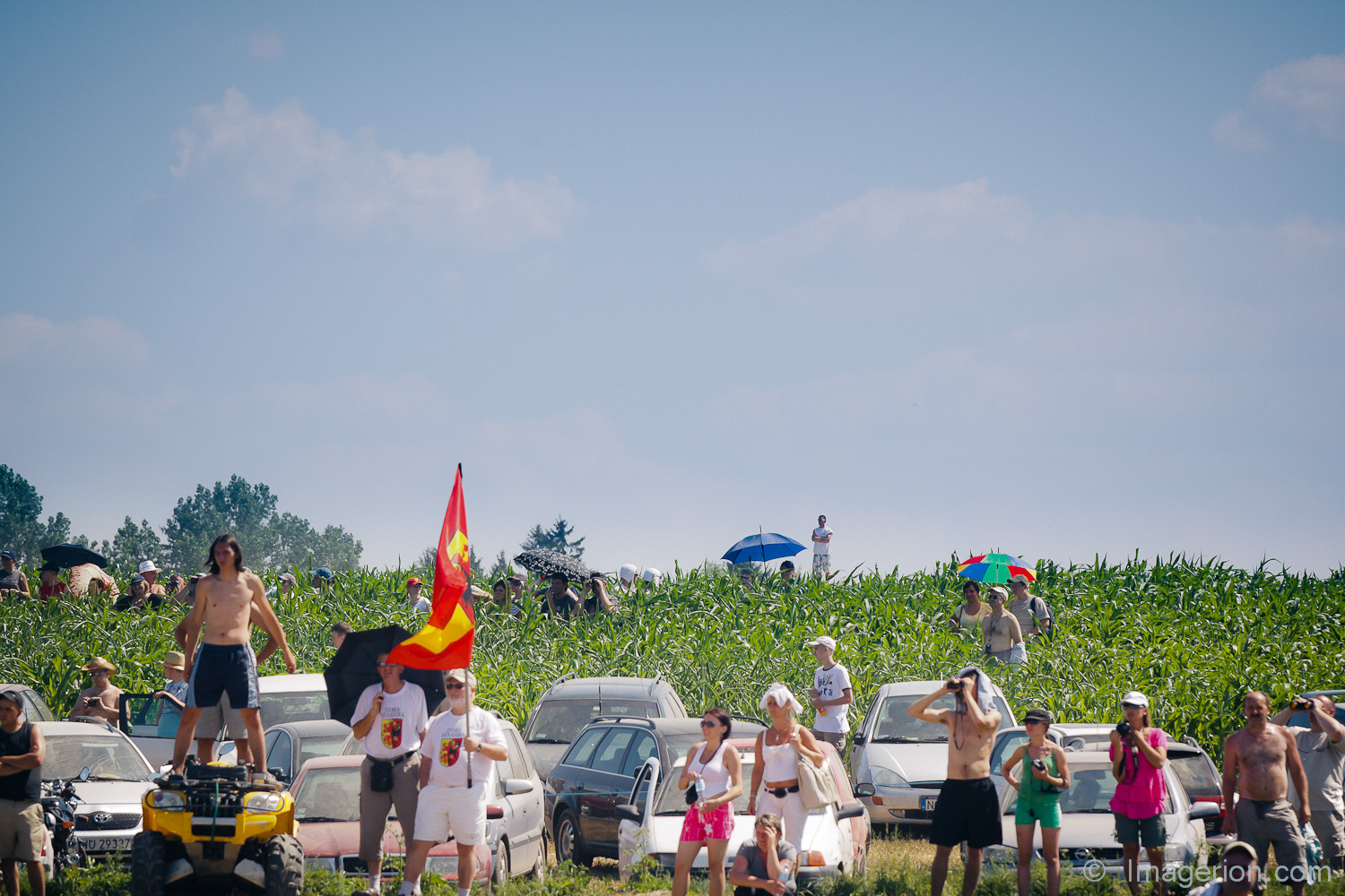 Spectators sitting in a corn field, with umbrellas, around their cars. Terrible heat