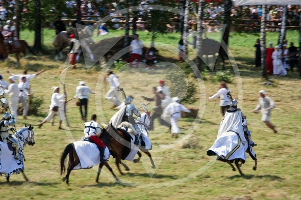 Teutonic Knights attack