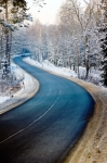 Image of road. Winding road in winter forest