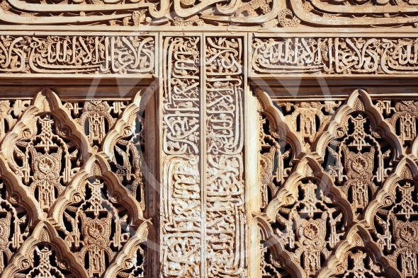 Calligraphic and plant motifs of Alhambra