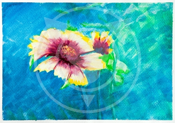 Flowers – watercolor painting – Zinnia