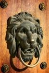 Image of knocker. Lion head door knocker