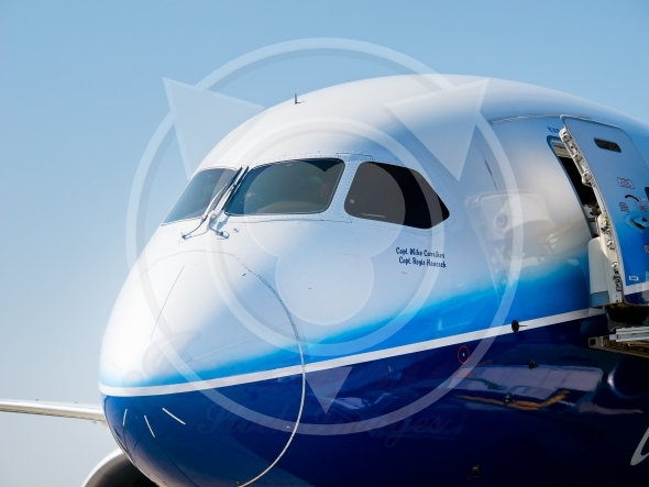 Dreamliner shown in the image