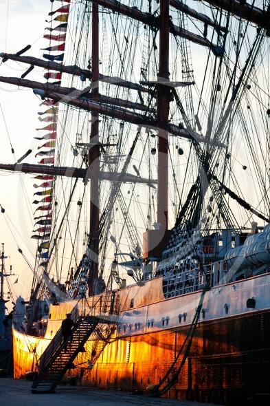 Tall ship barque Sedov