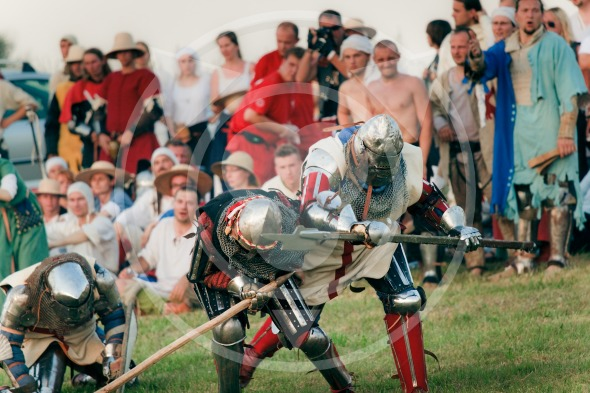 Medieval Knights Fight