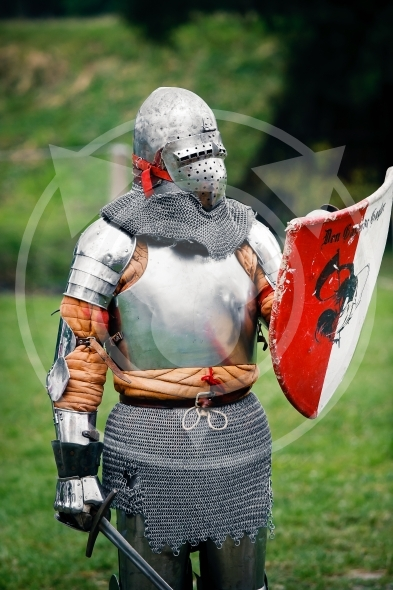 Armored  Knight ready to fight