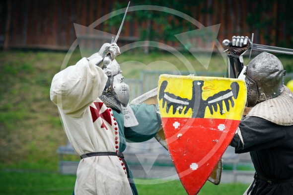 Medieval Knights Duels