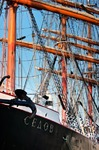 Image of rigging. Tall ship Sedov rigging