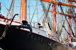 Image of vessel. Tall ship Sedov