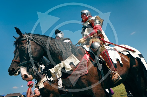 Teutonic Knight and his horse