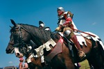 Image of knights. Teutonic Knight and his horse
