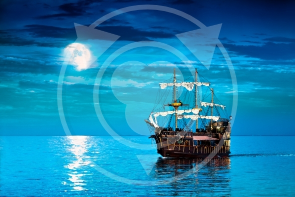 pirate shown in the image