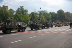 Image of convoy. Military convoy. Polish forces