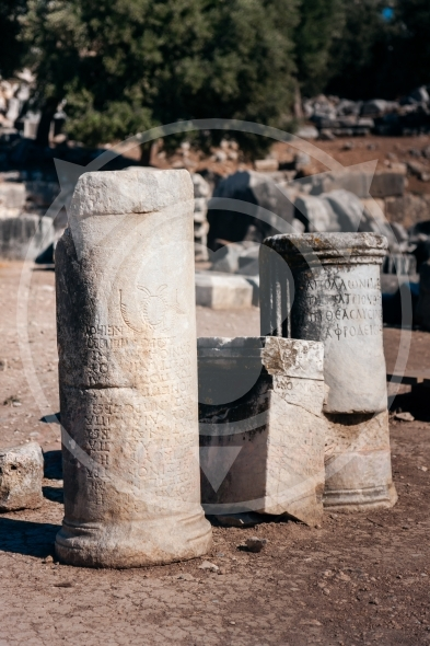 Didim columns, tales carved in stone
