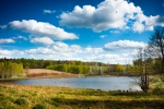 Image of forest. Lake surrounded by forest, Warmia Masuria. Poland