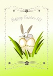 Image of easter. Easter eggs bunny