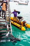 Image of catch. Cape Verde Fishermen