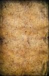 Image of paper. Old grunge paper