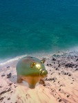 Image of moneybox. Save for vacation, piggy bank on the beach